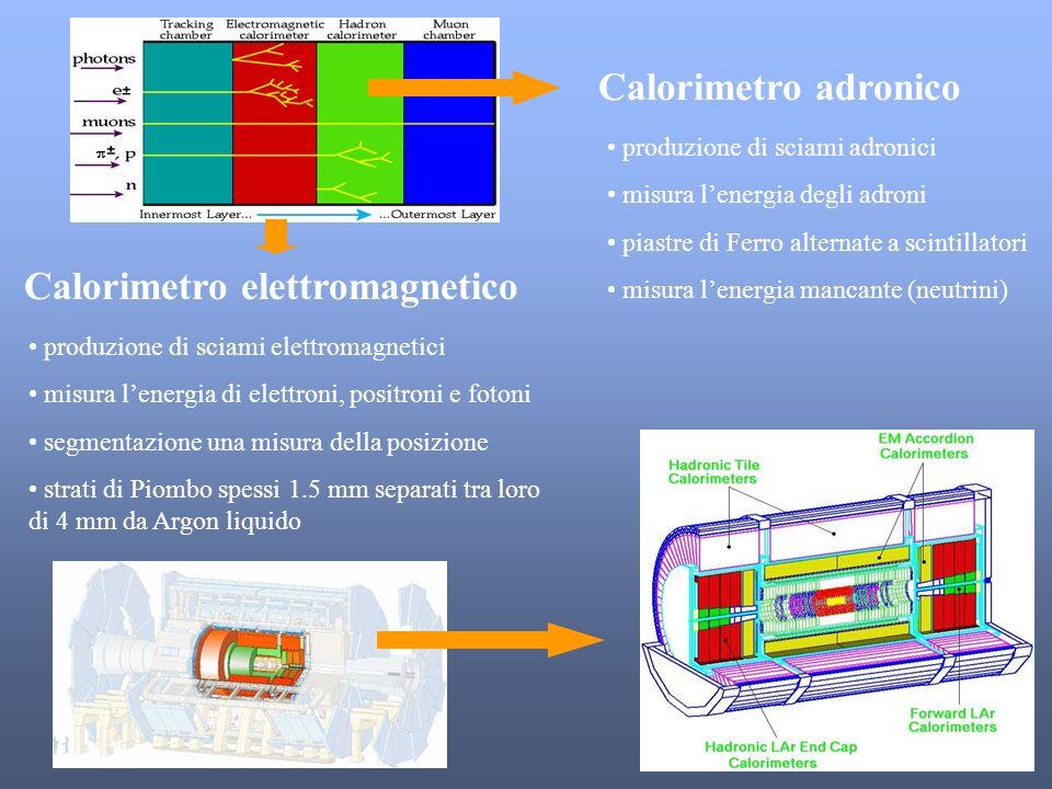 Calorimetro elettromagnetico