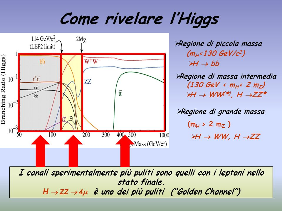 Come rivelare l'Higgs Regione di piccola massa. (mH<130 GeV/c2) H  bb. Regione di massa intermedia (130 GeV < mH< 2 mZ)