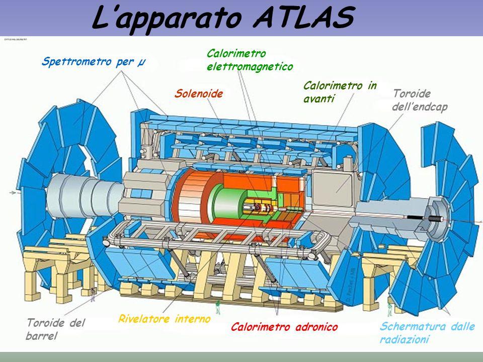 L'apparato ATLAS Calorimetro elettromagnetico. Spettrometro per µ. Calorimetro in avanti. Solenoide.