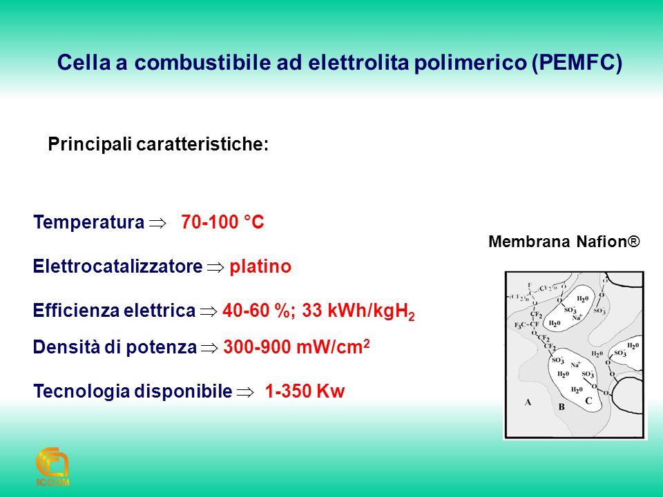 Cella a combustibile ad elettrolita polimerico (PEMFC)