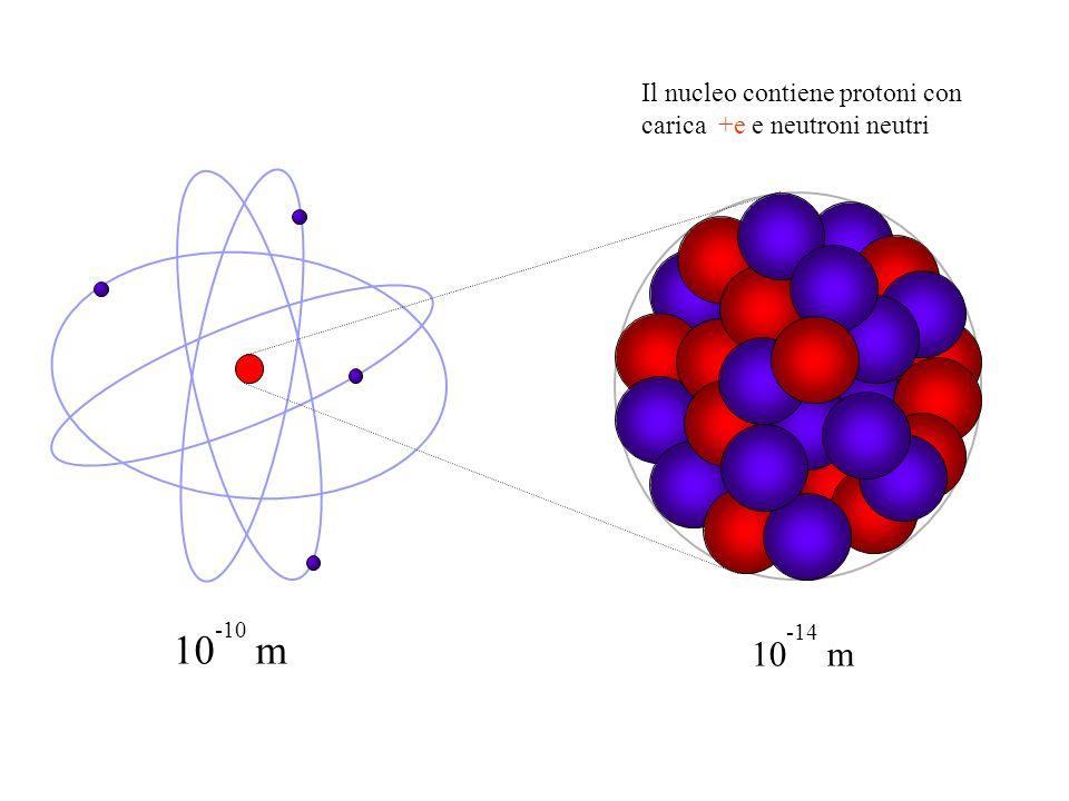Il nucleo contiene protoni con carica +e e neutroni neutri
