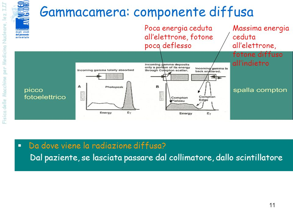 Gammacamera: componente diffusa