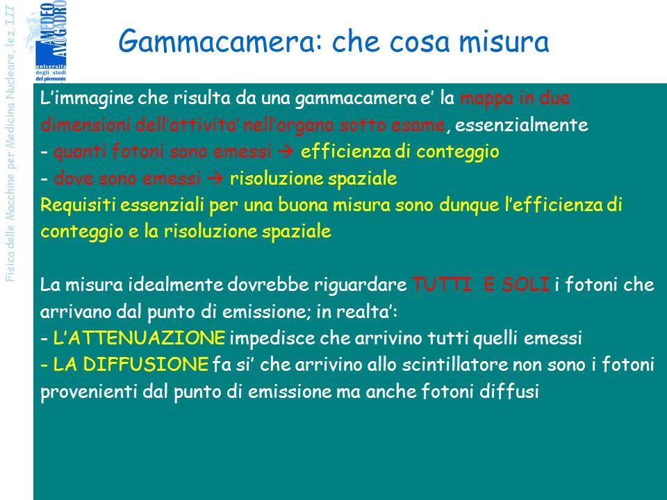 Gammacamera: che cosa misura