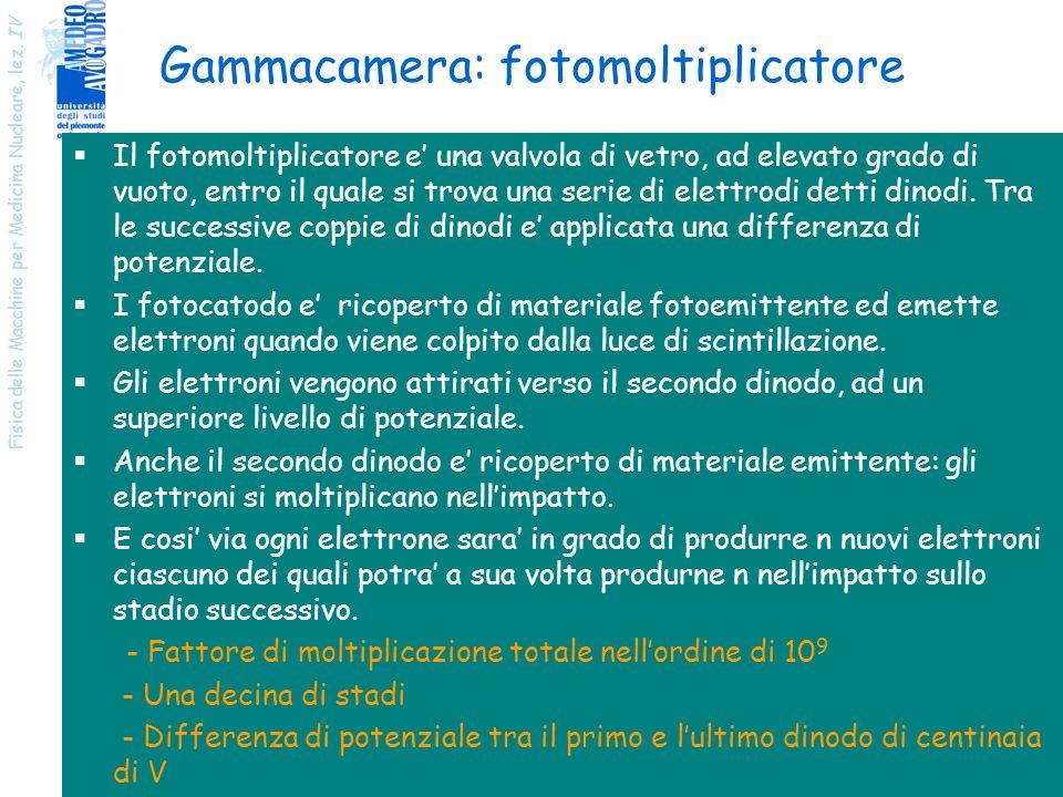 Gammacamera: fotomoltiplicatore