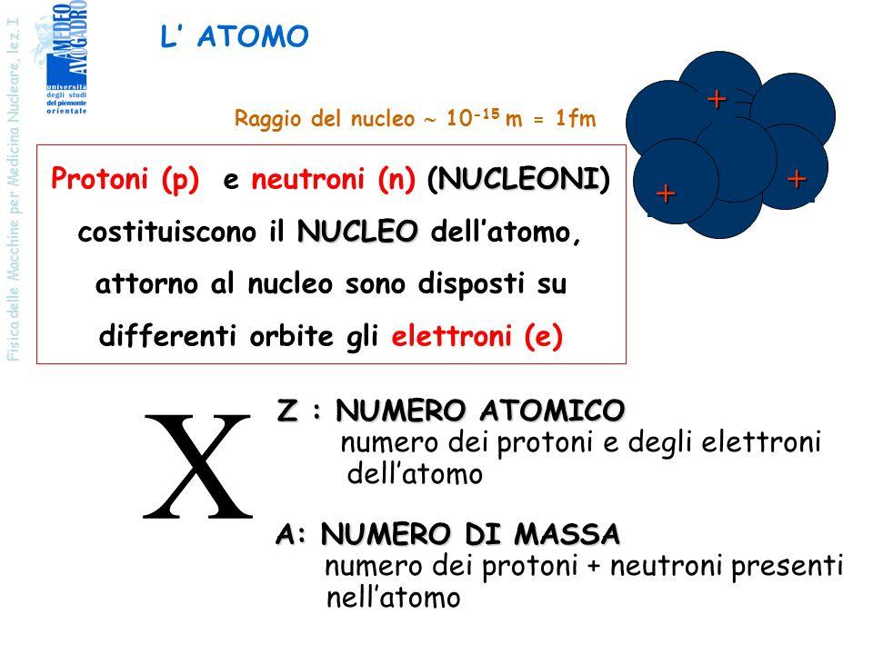 X + L' ATOMO Protoni (p) e neutroni (n) (NUCLEONI)