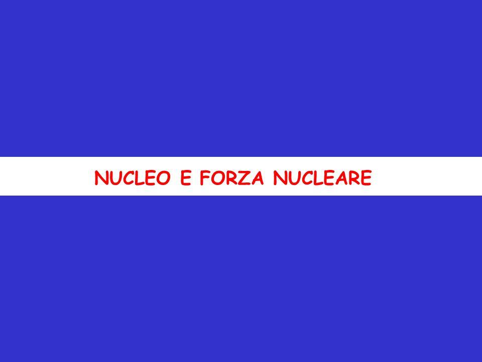 NUCLEO E FORZA NUCLEARE