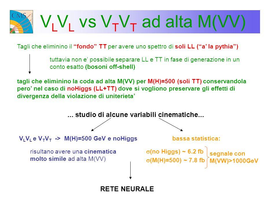 VLVL vs VTVT ad alta M(VV)