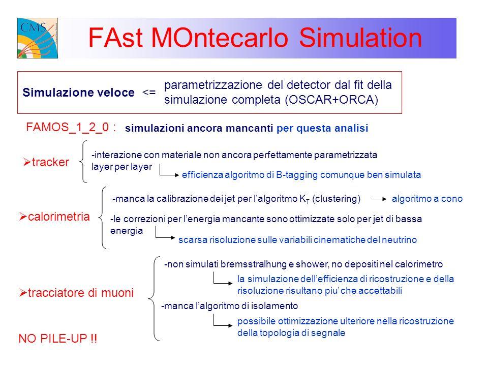 FAst MOntecarlo Simulation