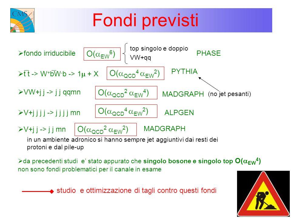 Fondi previsti O(aEW6) O(aQCD4 aEW2) O(aQCD2 aEW4) O(aQCD4 aEW2)