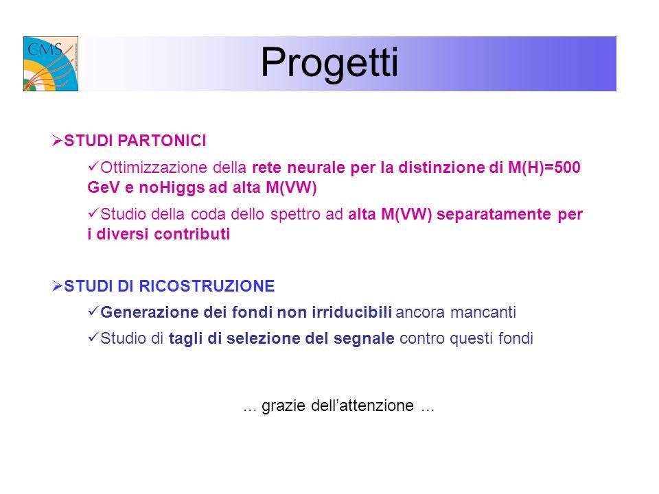 Progetti STUDI PARTONICI