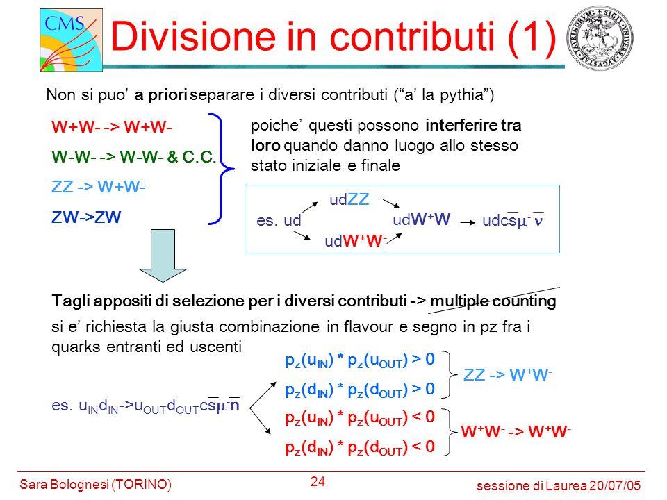 Divisione in contributi (1)