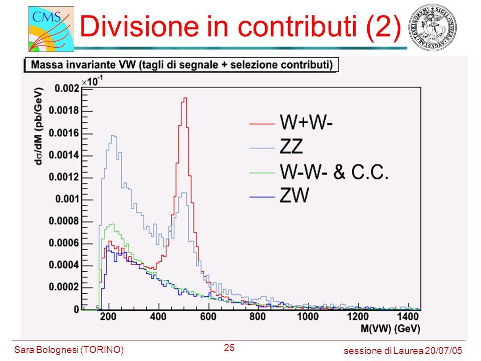 Divisione in contributi (2)
