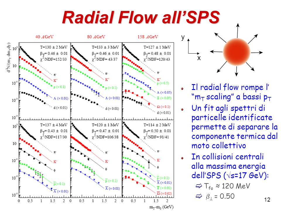 Radial Flow all'SPS Il radial flow rompe l' mT scaling a bassi pT