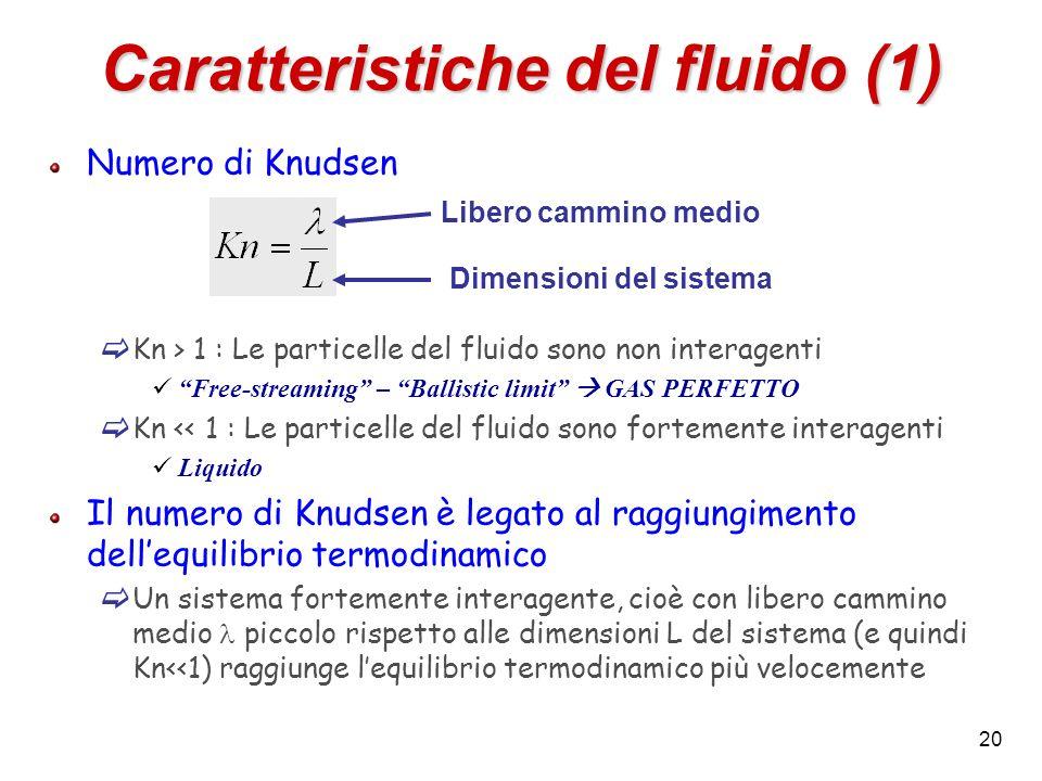 Caratteristiche del fluido (1)