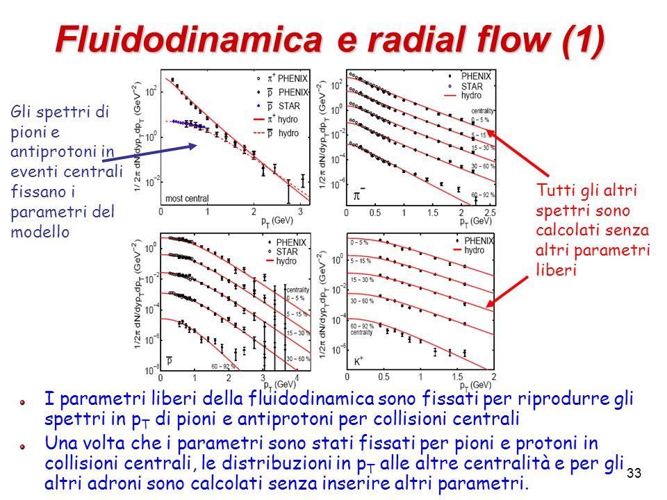 Fluidodinamica e radial flow (1)
