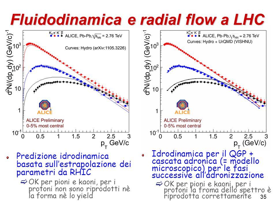Fluidodinamica e radial flow a LHC