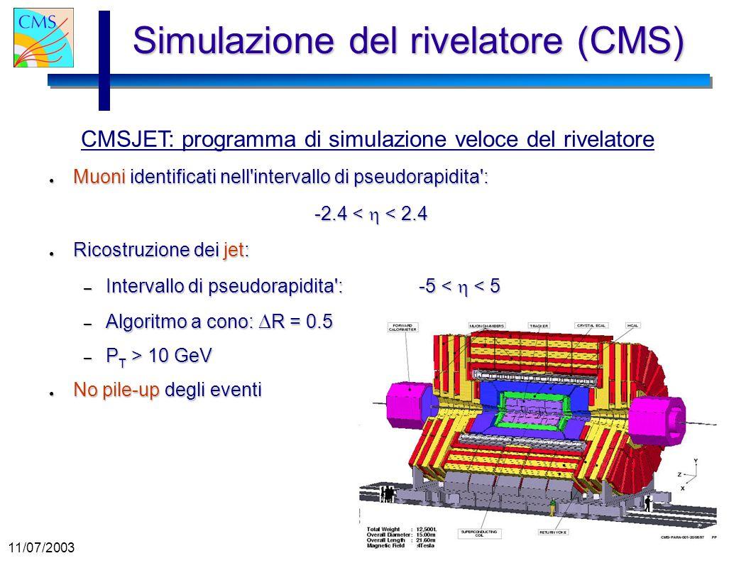 Simulazione del rivelatore (CMS)