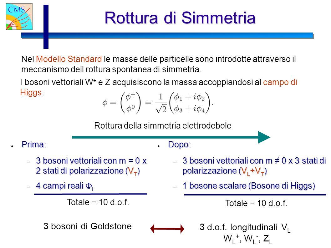Rottura di Simmetria 3 bosoni di Goldstone 3 d.o.f. longitudinali VL