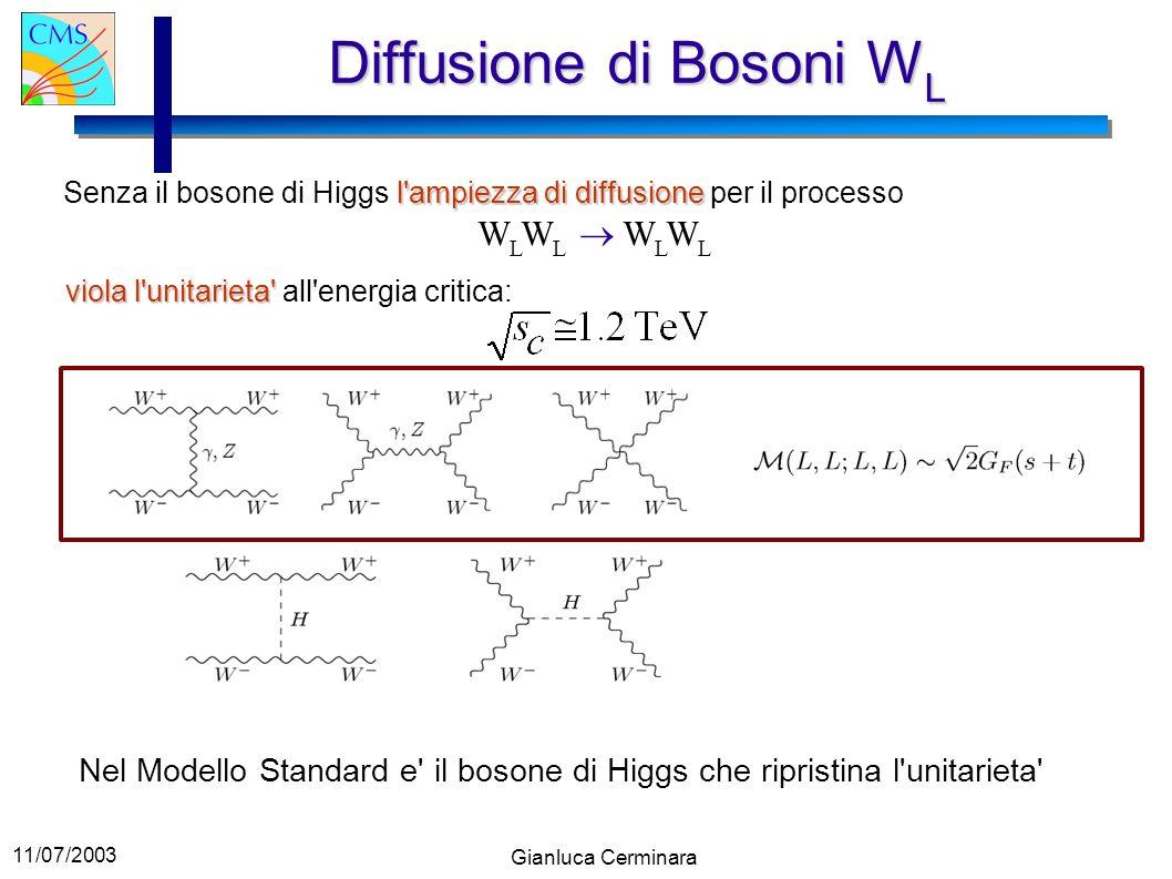 Diffusione di Bosoni WL