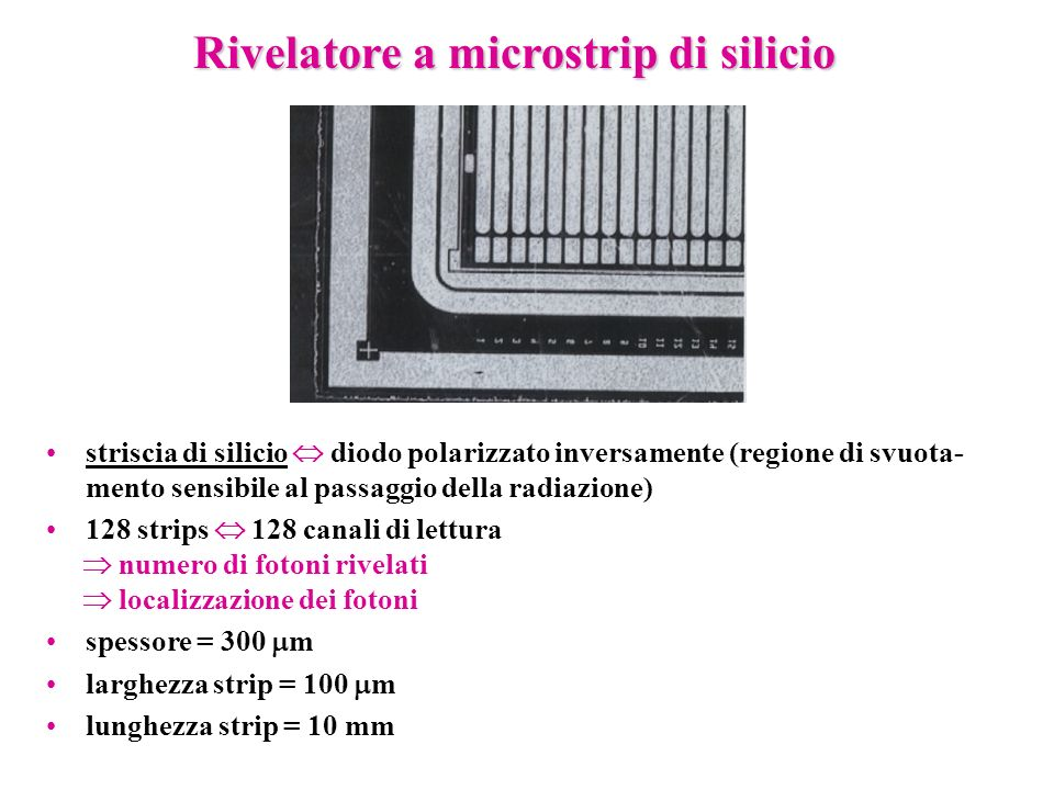 Rivelatore a microstrip di silicio