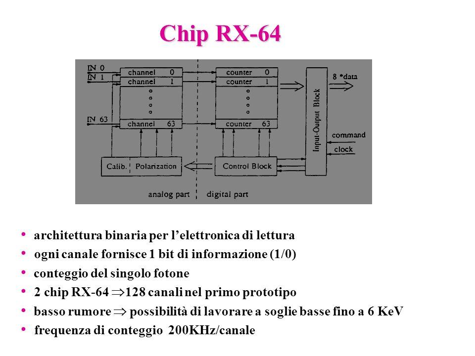 Chip RX-64 architettura binaria per l'elettronica di lettura