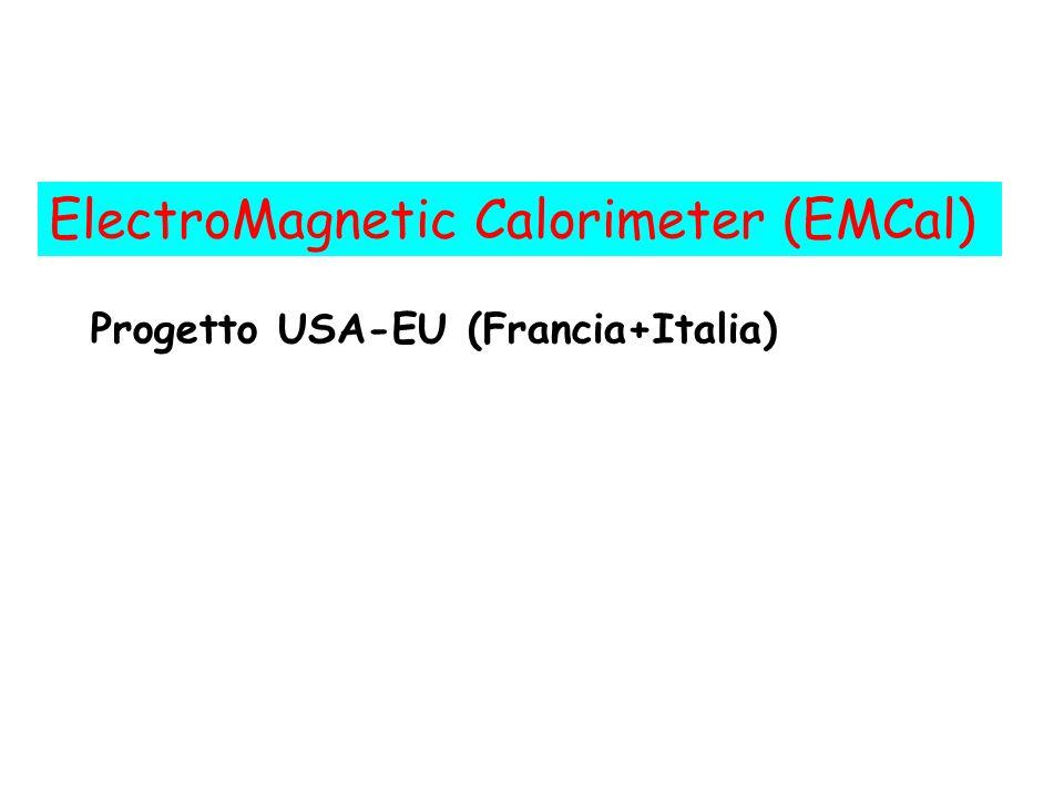 ElectroMagnetic Calorimeter (EMCal)