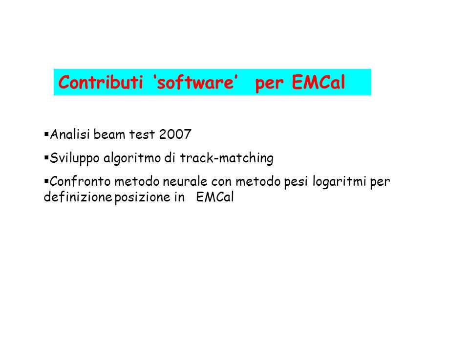 Contributi 'software' per EMCal