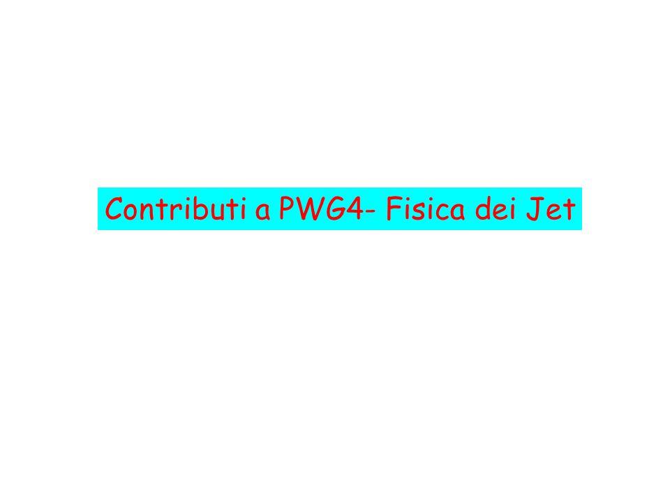 Contributi a PWG4- Fisica dei Jet