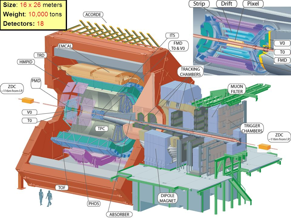 Size: 16 x 26 meters Weight: 10,000 tons Detectors: 18