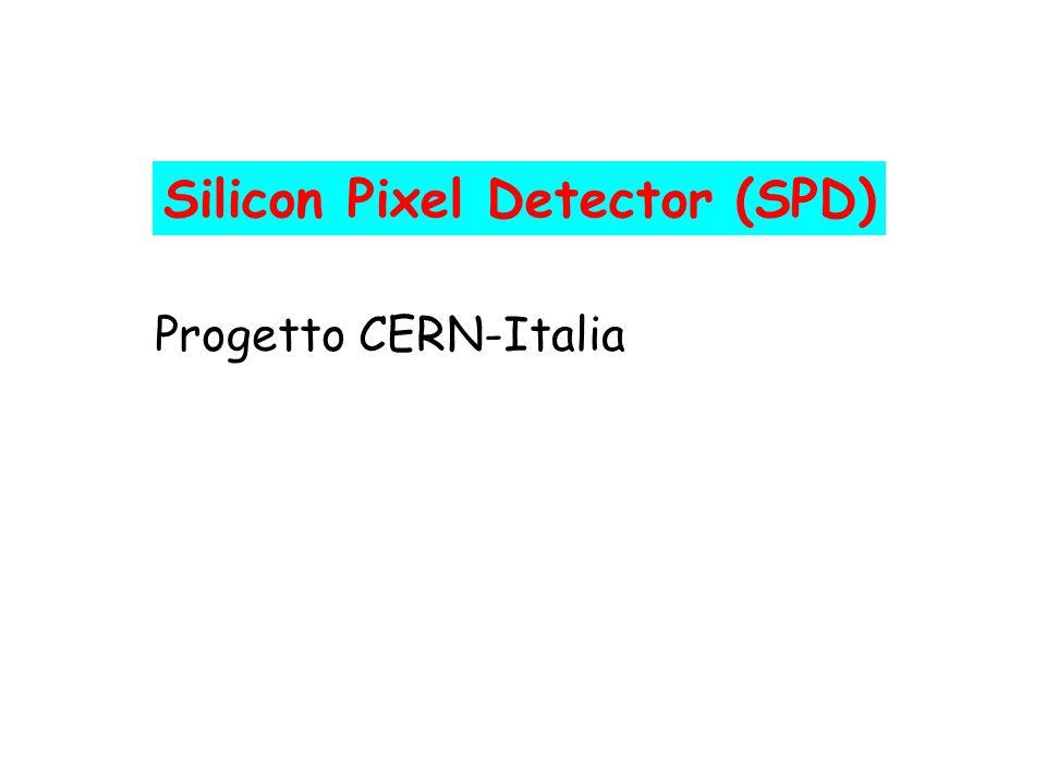Silicon Pixel Detector (SPD)