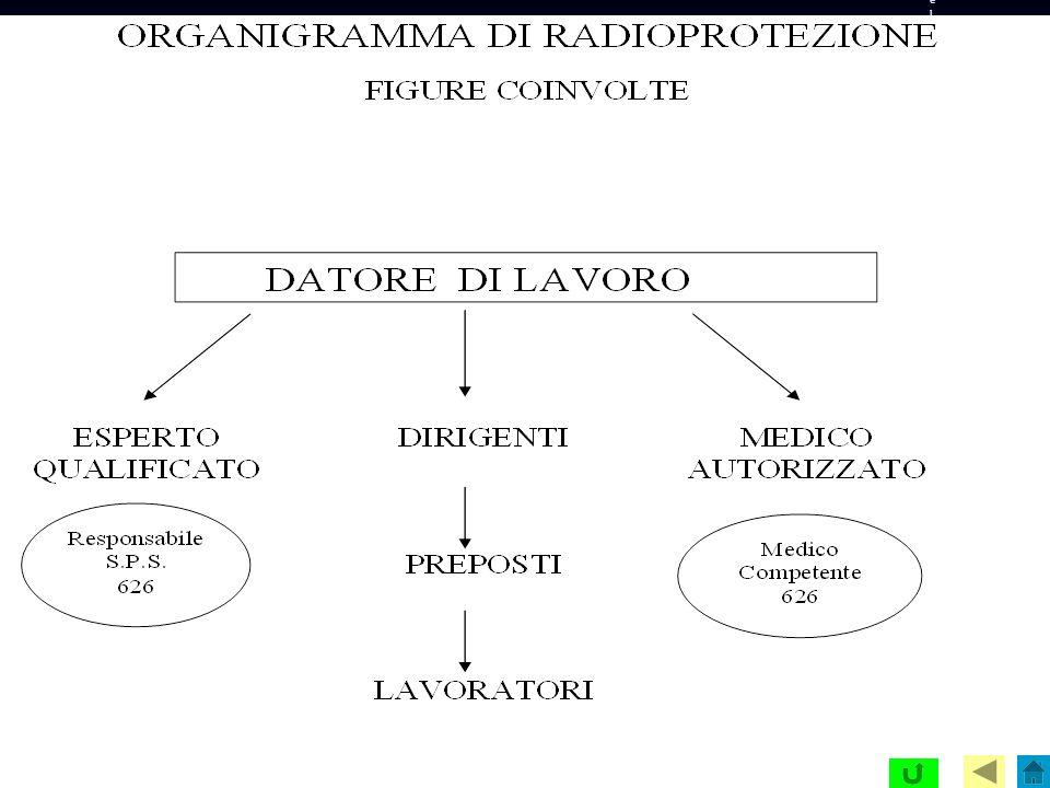 Organigramma della radioprotezione