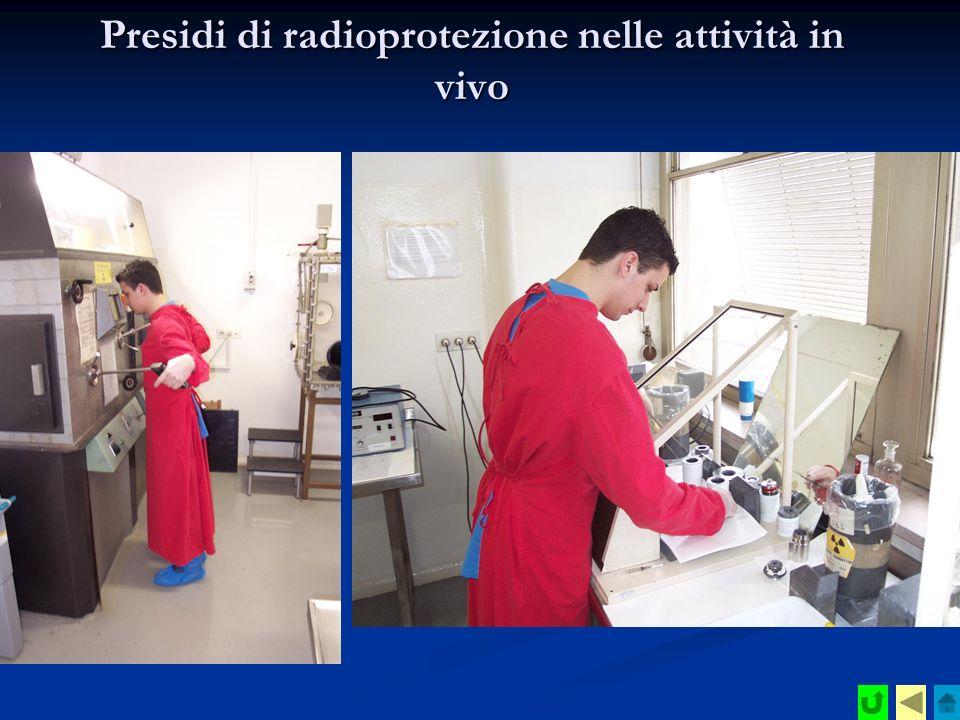 Presidi di radioprotezione nelle attività in vivo