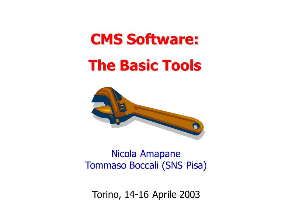 Nicola Amapane Tommaso Boccali (SNS Pisa)