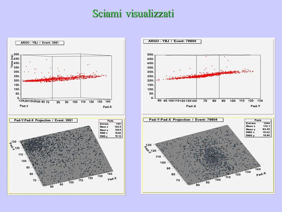 Sciami visualizzati parlare della novità di argo di poter visualizzare tutto lo sciame e quindi anche dell'imaging per il fondo.