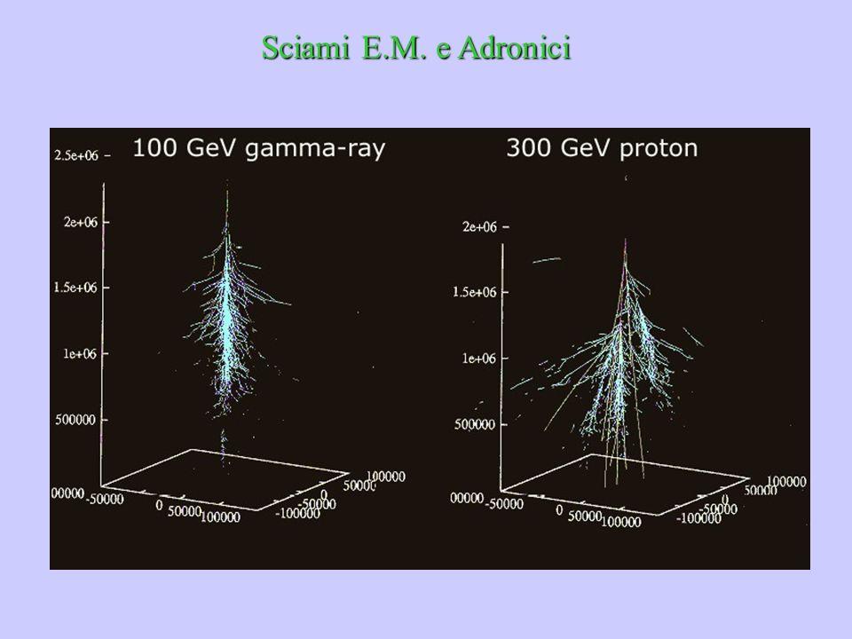 Sciami E.M. e Adronici