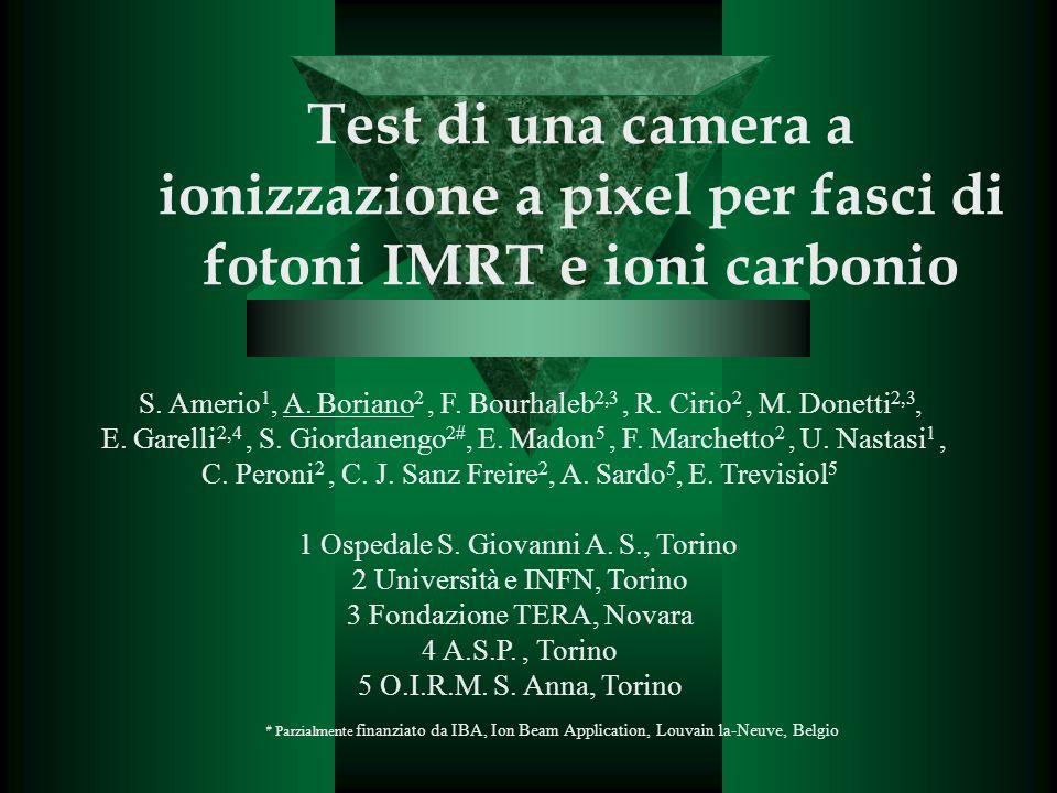 Test di una camera a ionizzazione a pixel per fasci di fotoni IMRT e ioni carbonio