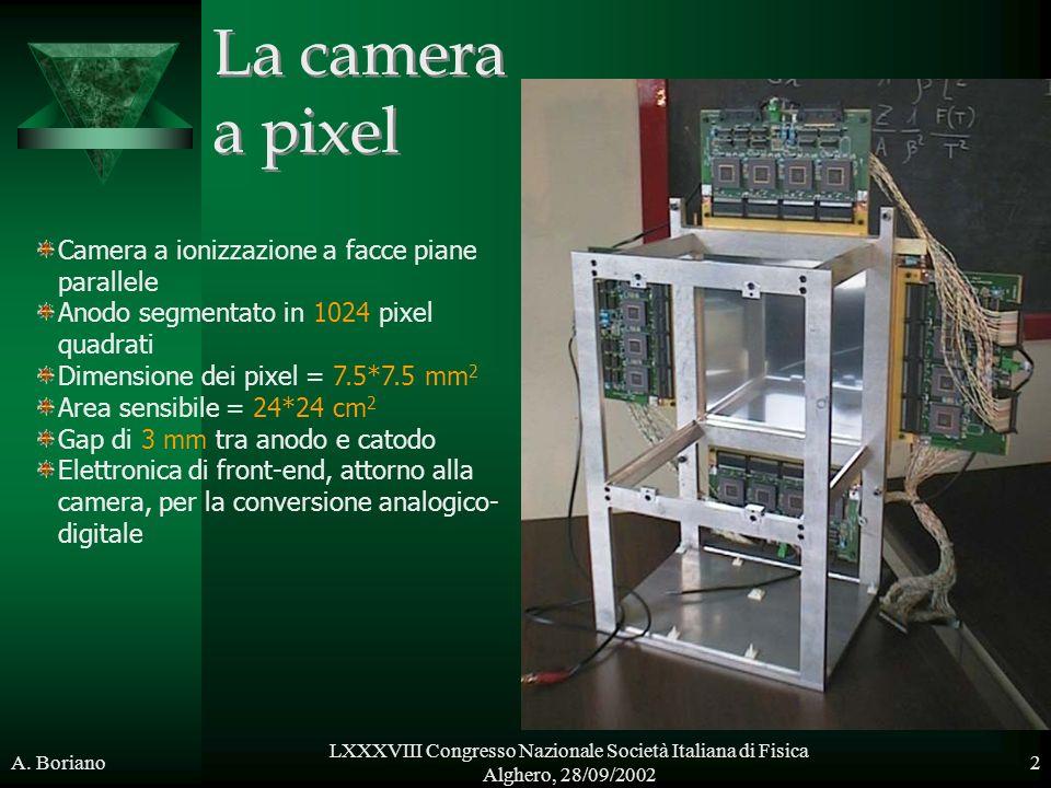 La camera a pixel Camera a ionizzazione a facce piane parallele