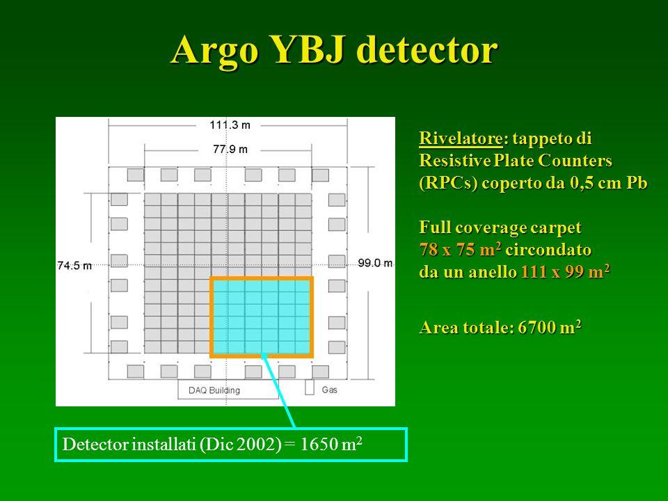 Argo YBJ detector Apparato a sciame a copertura totale
