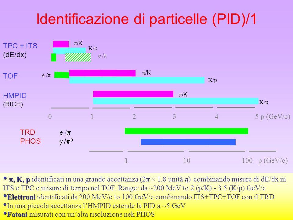 Identificazione di particelle (PID)/1