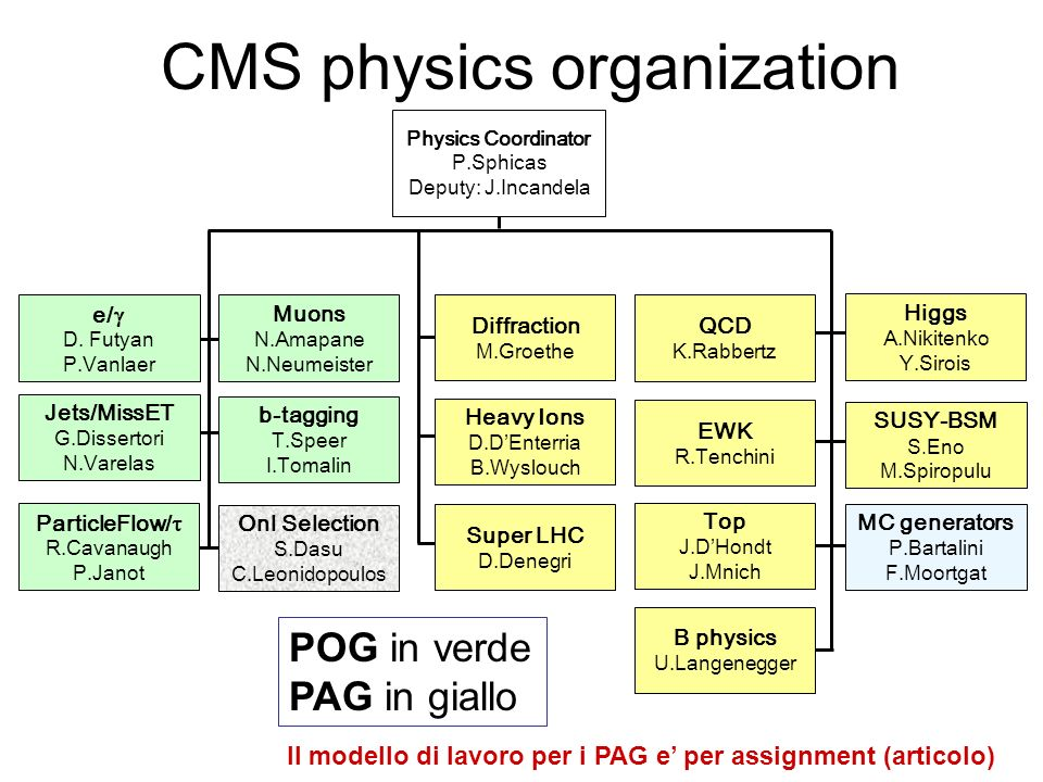 CMS physics organization