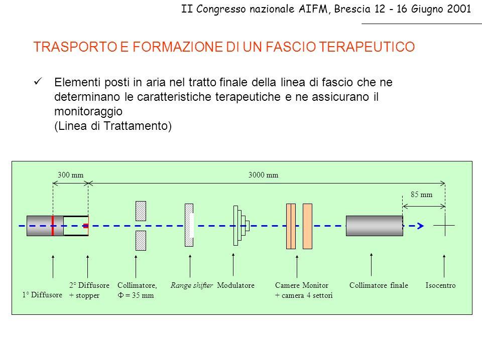 TRASPORTO E FORMAZIONE DI UN FASCIO TERAPEUTICO