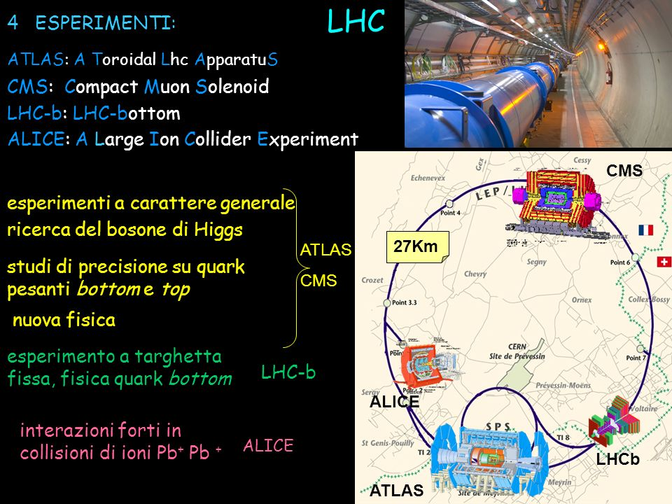 LHC 4 ESPERIMENTI: CMS: Compact Muon Solenoid LHC-b: LHC-bottom
