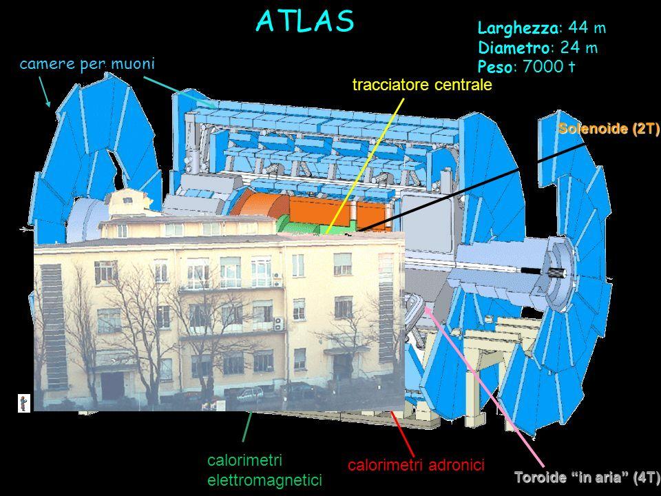 ATLAS Larghezza: 44 m Diametro: 24 m Peso: 7000 t camere per muoni