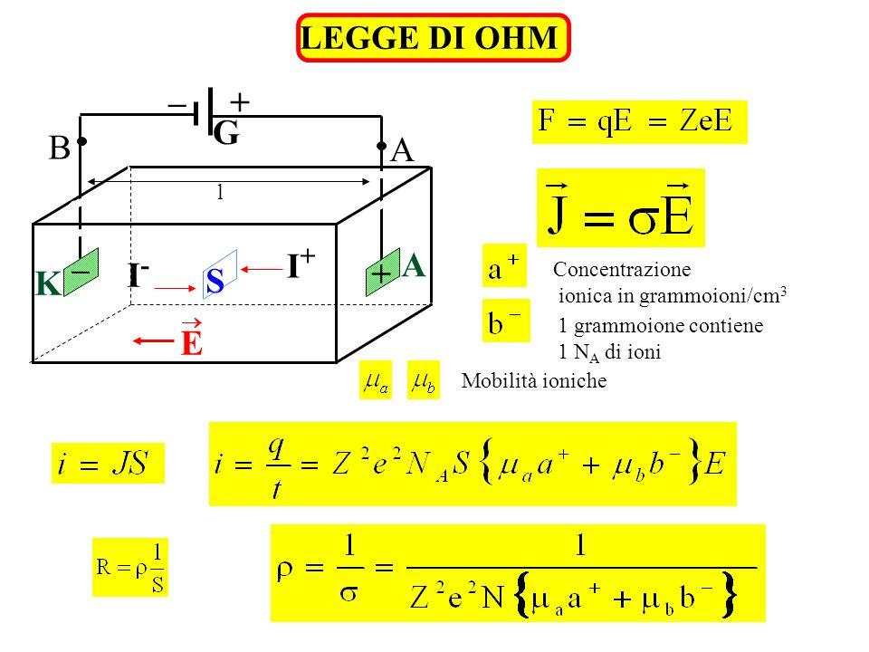 I- I+ S K A G + – B E LEGGE DI OHM l Concentrazione