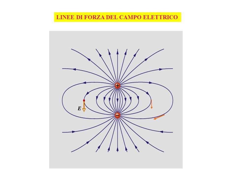 LINEE DI FORZA DEL CAMPO ELETTRICO
