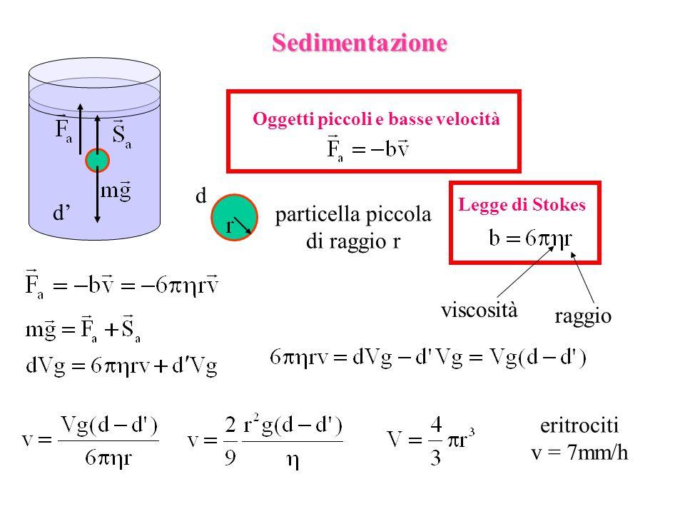 Sedimentazione d d' particella piccola di raggio r viscosità raggio
