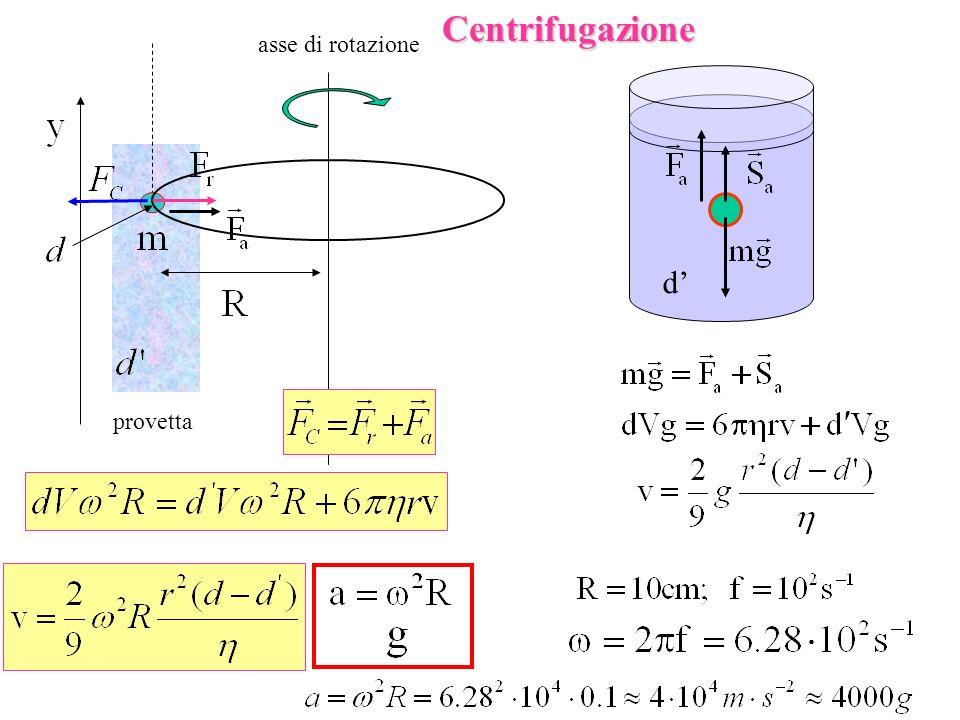 Centrifugazione asse di rotazione d' provetta