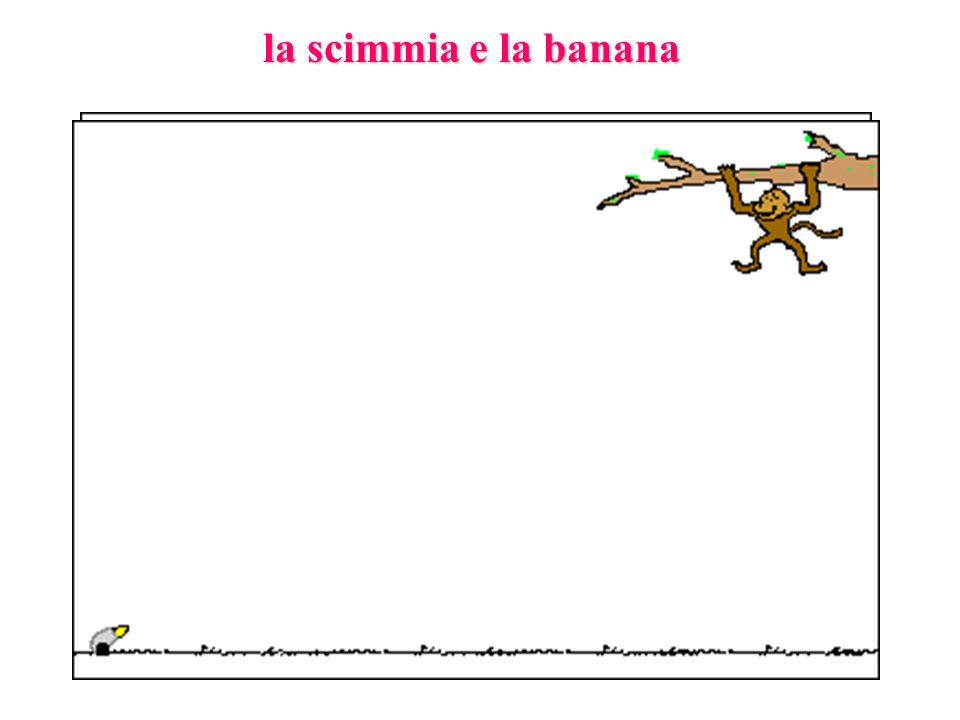 la scimmia e la banana
