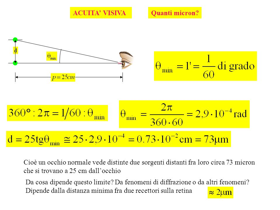 ACUITA' VISIVA Quanti micron Cioè un occhio normale vede distinte due sorgenti distanti fra loro circa 73 micron.