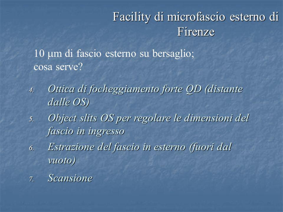 Facility di microfascio esterno di Firenze